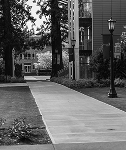 Pathway on campus