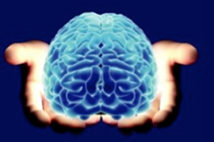 Brain being held in someone's hands